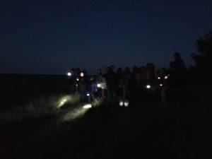 Nachtwanderung auf Rügen