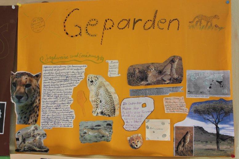 Kinderplakat_Geparden